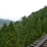 View from trestle